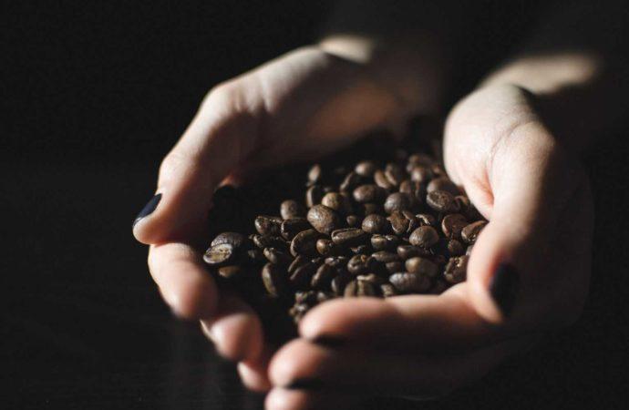 Best Kona Espresso Develops On Hawaiian Facilities