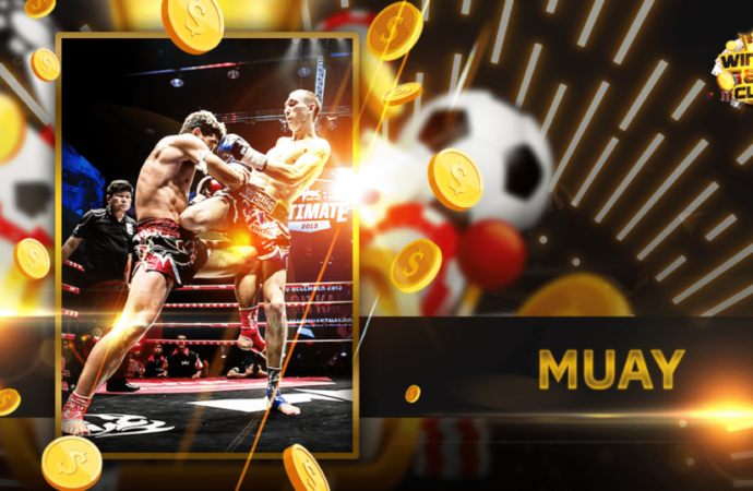 The Different Types of Boxing Betting